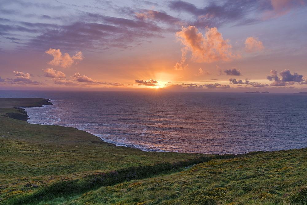 Geokaun Mountain, County Kerry, Munster, Republic of Ireland, Europe - 1240-260