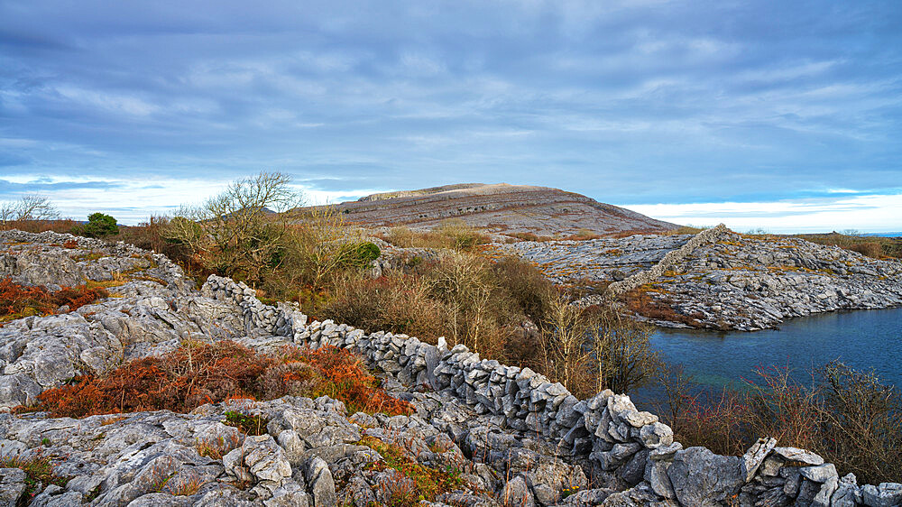 Burren National Park, County Clare, Munster, Republic of Ireland, Europe