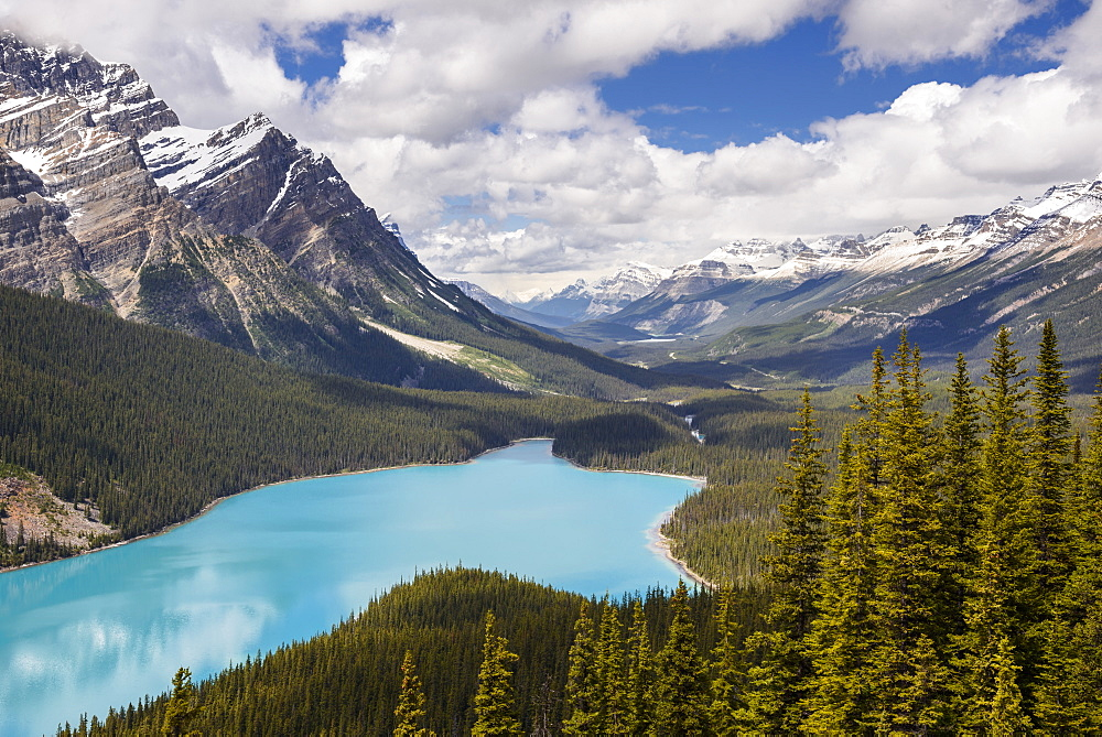 Peyto Lake, Banff National Park, UNESCO World Heritage Site, Alberta, Canada, North America - 1241-188
