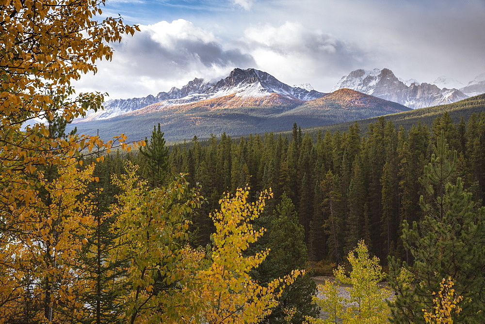 Mountain range at Morant's Curve in autumn foliage, Banff National Park, UNESCO World Heritage Site, Alberta, Rocky Mountains, Canada, North America - 1241-197