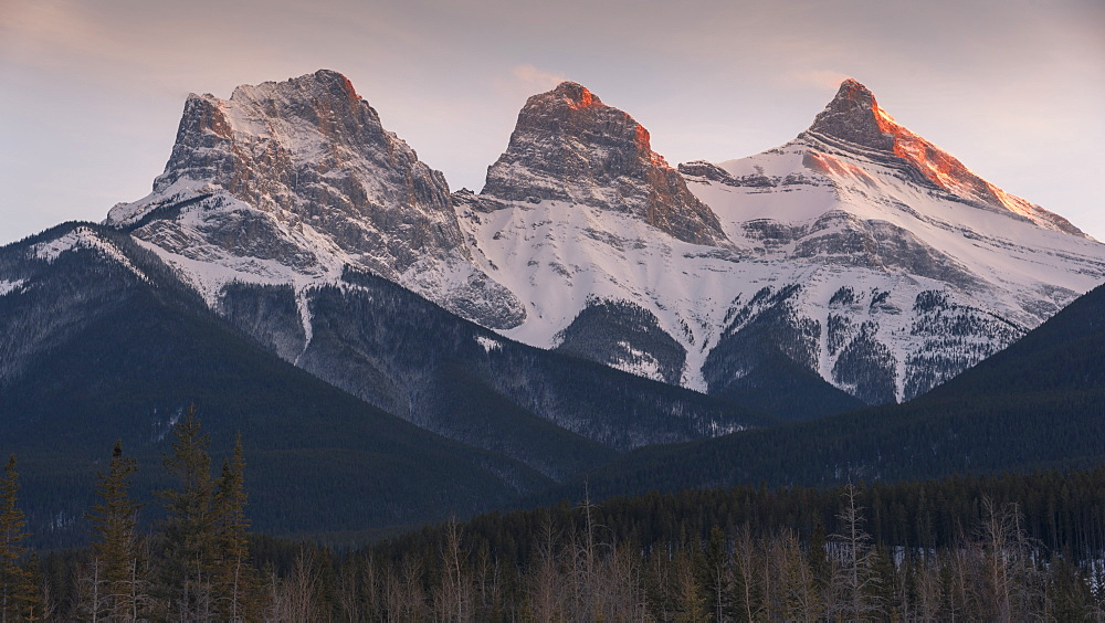 Evening light on the peaks of Three Sisters near Banff National Park, Canmore, Alberta, Canadian Rockies, Canada, North America - 1241-206