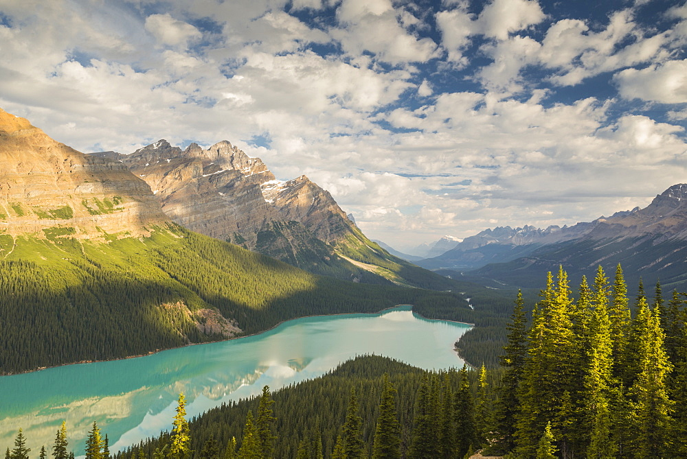 Wide view of Peyto Lake, Banff National Park, UNESCO World Heritage Site, Alberta, Rocky Mountains, Canada, North America - 1241-76