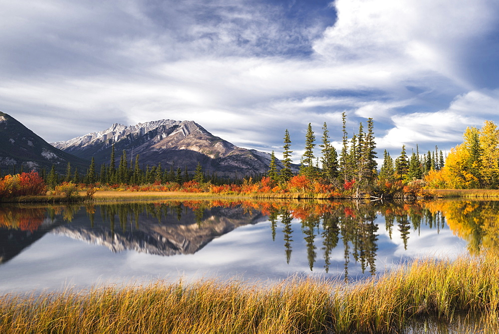Autumn foliage and mountain lake, Jasper National Park, UNESCO World Heritage Site, Canadian Rockies, Alberta, Canada, North America - 1241-93