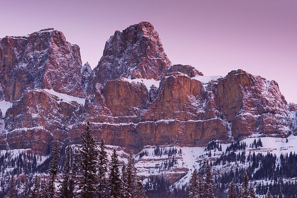 Eisenhower Peak on Castle Mountain at sunrise, Banff National Park, UNESCO World Heritage Site, Alberta, The Rockies, Canada, North America - 1241-96