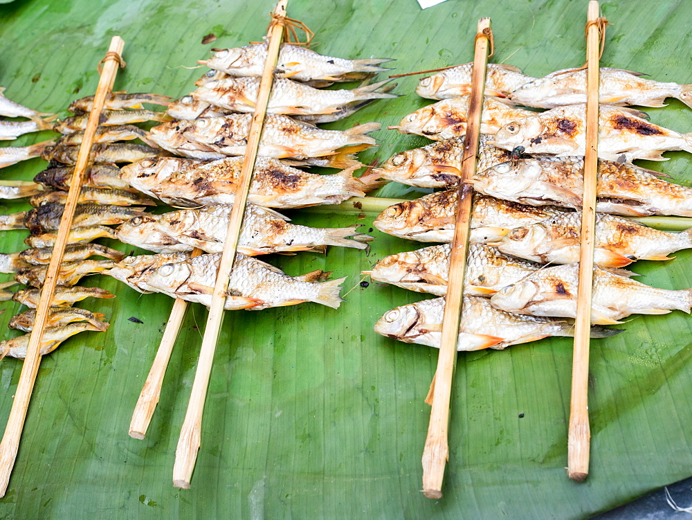 Grilled river fish from an outdoor market, Nong Khiaw, Laos, Indochina, Southeast Asia, Asia - 1242-222