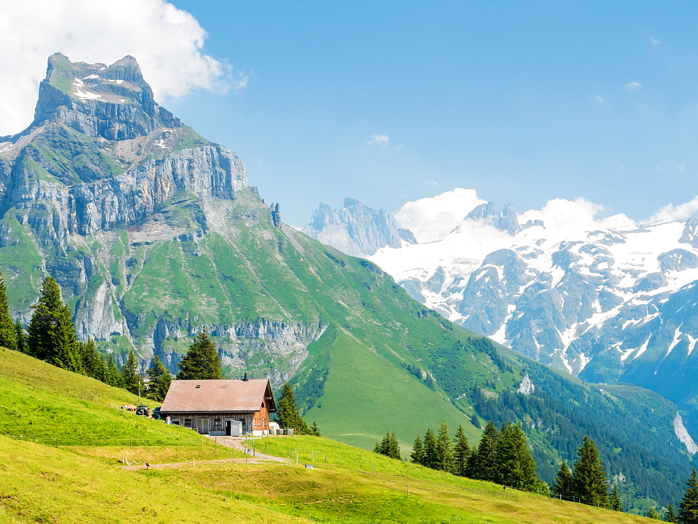 Swiss Alps, mountain scene, Switzerland, Europe - 1242-253