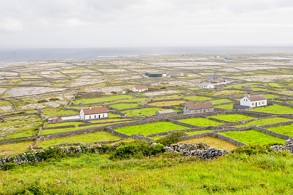 Bleak flat landscape of stone-walled farms, Inishmaan, Aran Islands, County Galway, Connacht, Republic of Ireland, Europe