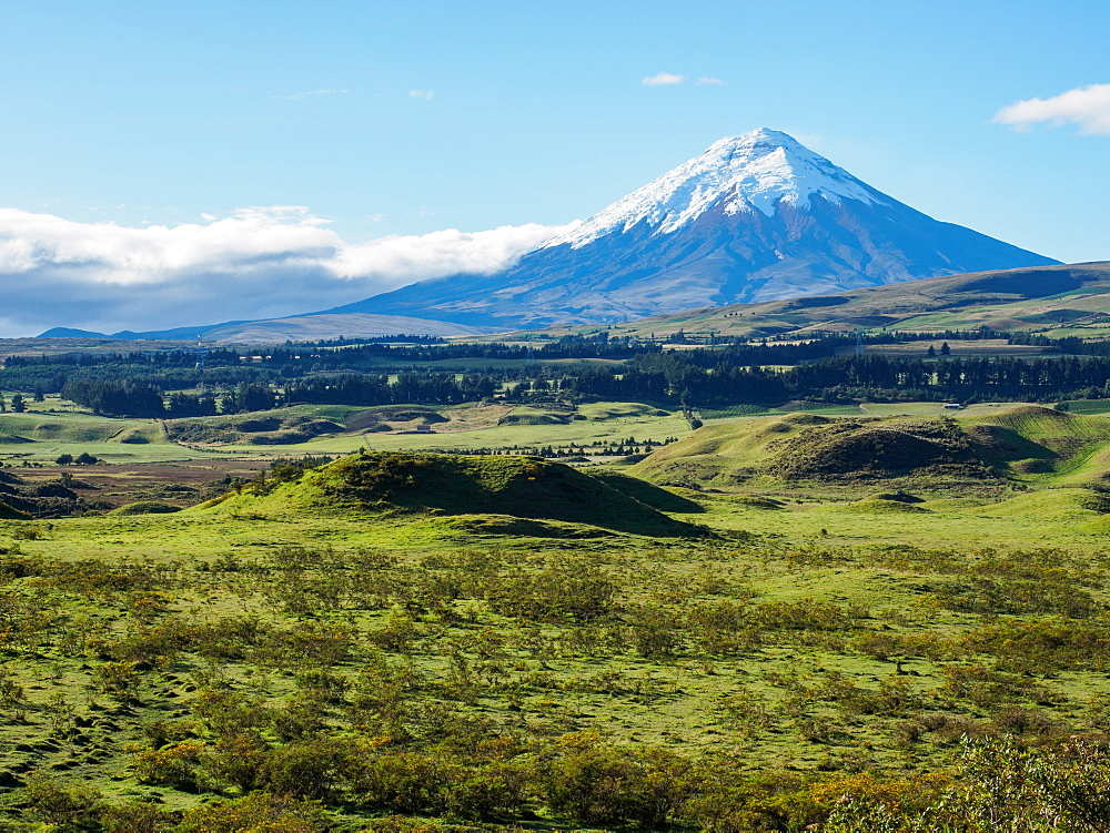 Cotopaxi volcano, Cotopaxi National Park, Andes mountains, Ecuador, South America