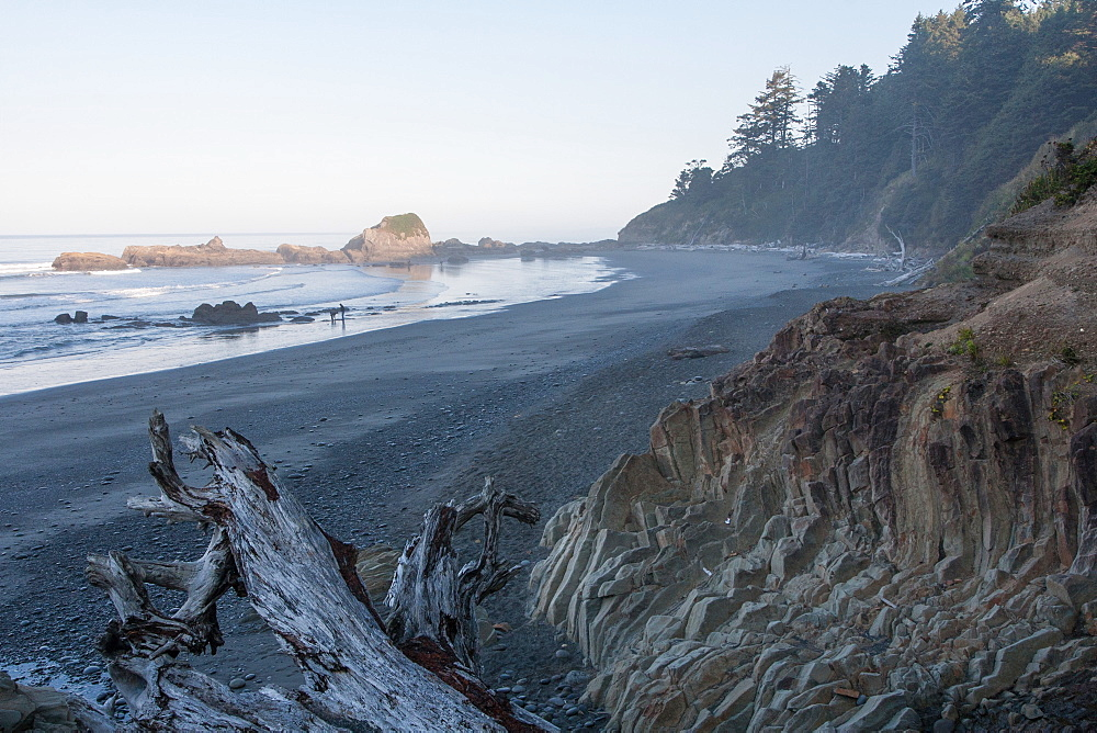 Pacific coast beach, Olympic National Park, UNESCO World Heritage Site, Washington State, United States of America, North America