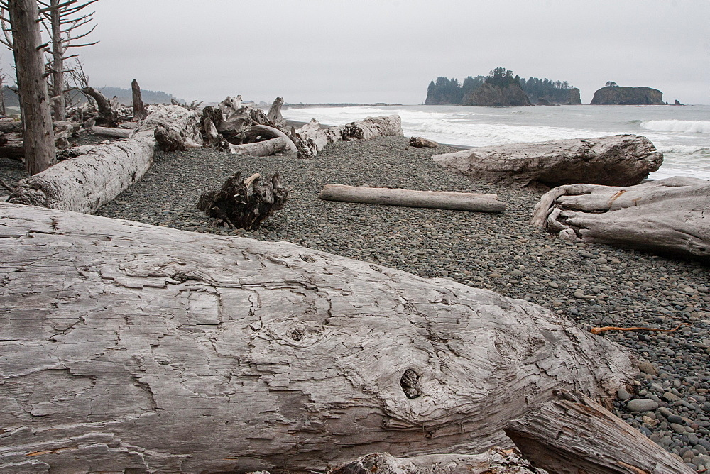 Driftwood logs, Pacific coast beach, Olympic National Park, UNESCO World Heritage Site, Washington State, United States of America, North America
