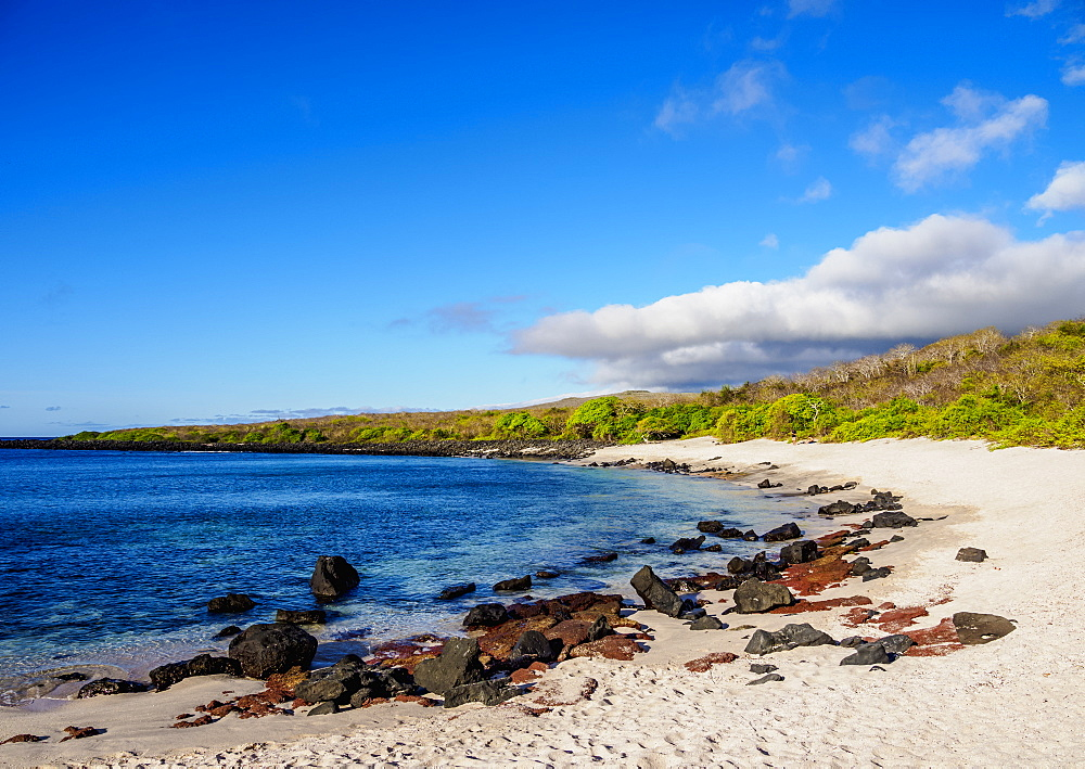 Baquerizo Beach, San Cristobal (Chatham) Island, Galapagos, UNESCO World Heritage Site, Ecuador, South America