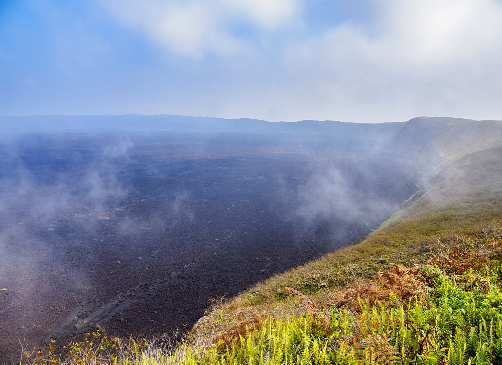 Sierra Negra Volcano, Highlands of Isabela (Albemarle) Island, Galapagos, UNESCO World Heritage Site, Ecuador, South America