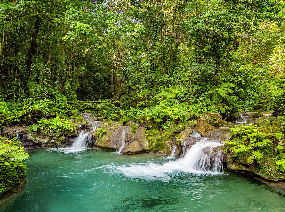 Reach Falls, Portland Parish, Jamaica, West Indies, Caribbean, Central America