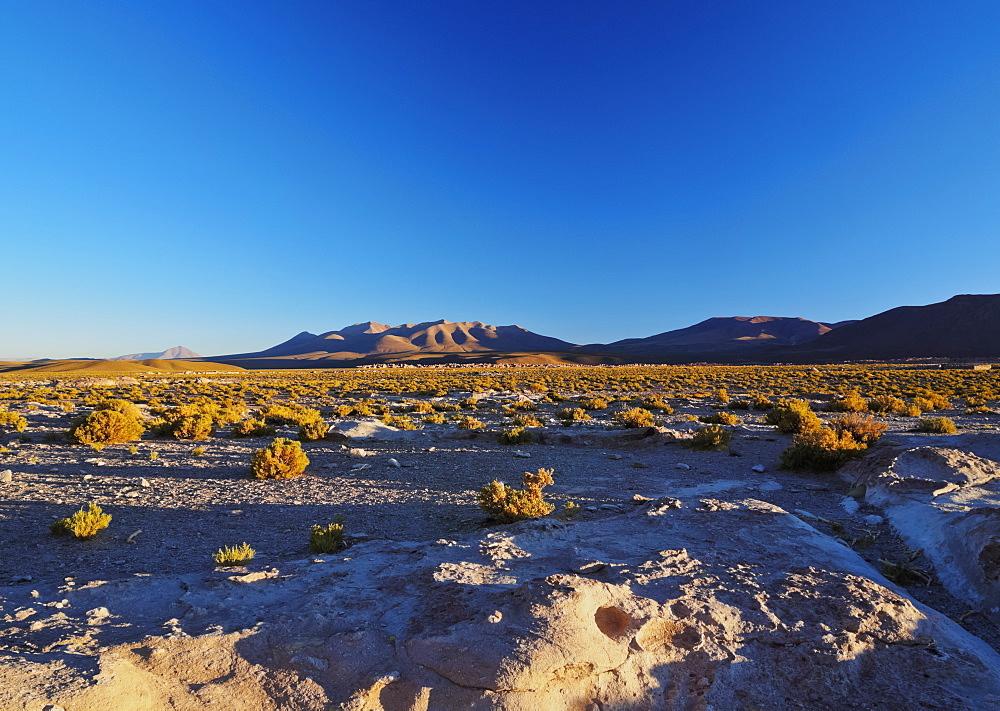 Bolivia, Potosi Departmant, Nor Lipez Province, Landscape near the Villa Mar village at sunset.