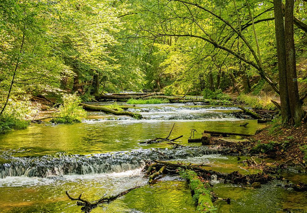 Cascades on the Tanew River, Szumy nad Tanwia, Tanew Nature Reserve, Roztocze, Lublin Voivodeship, Poland, Europe - 1245-2118