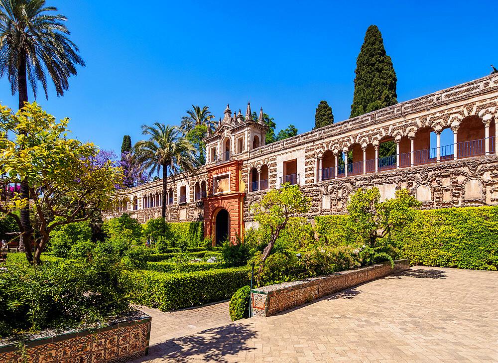 Gardens in Reales Alcazares de Sevilla, Alcazar of Seville, UNESCO World Heritage Site, Seville, Andalusia, Spain - 1245-2236