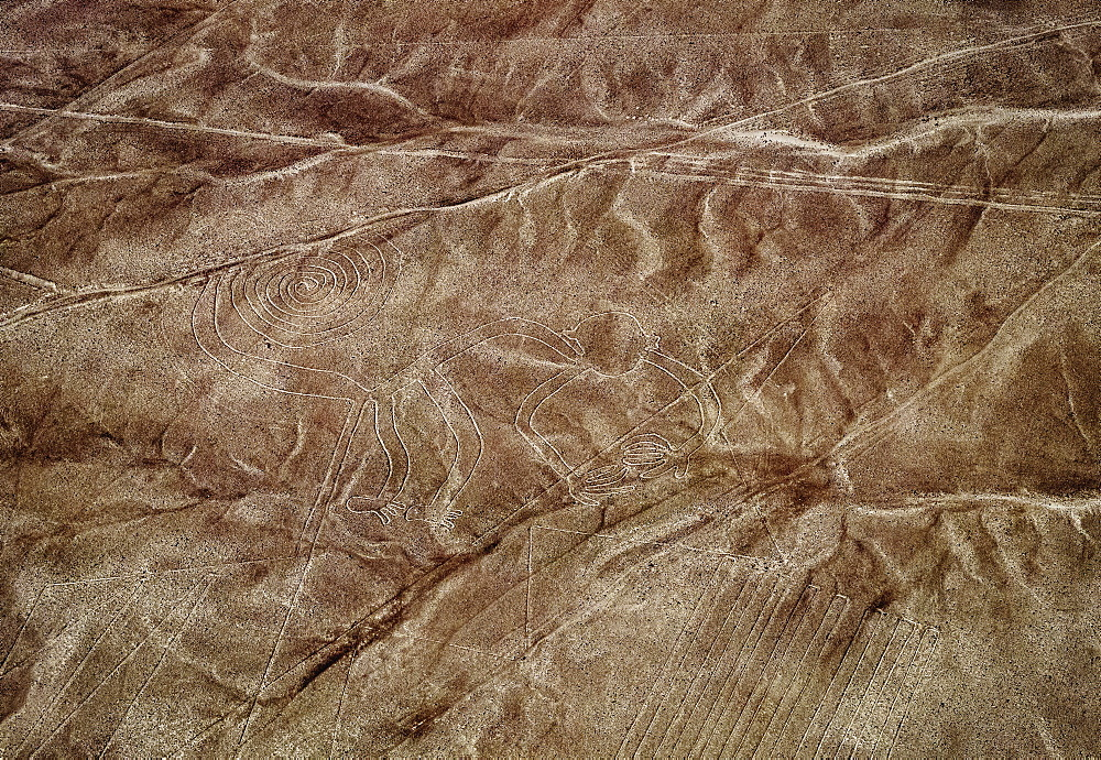 The Monkey Geoglyph, aerial view, Nazca, UNESCO World Heritage Site, Ica Region, Peru, South America