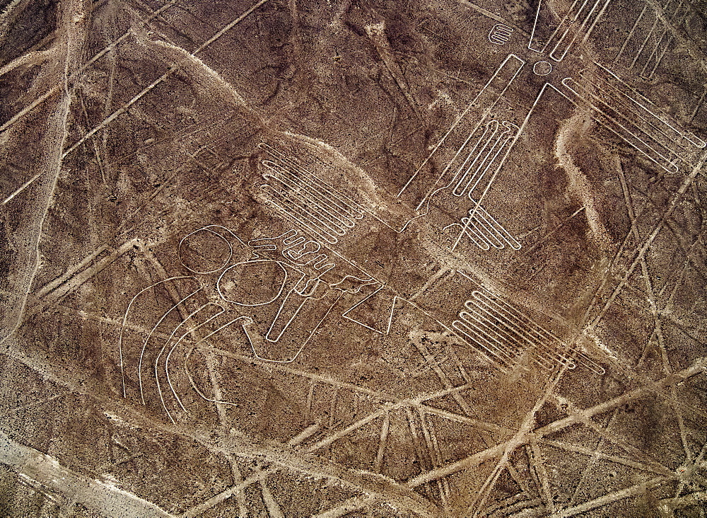 The Bird Geoglyph, aerial view, Nazca, UNESCO World Heritage Site, Ica Region, Peru, South America