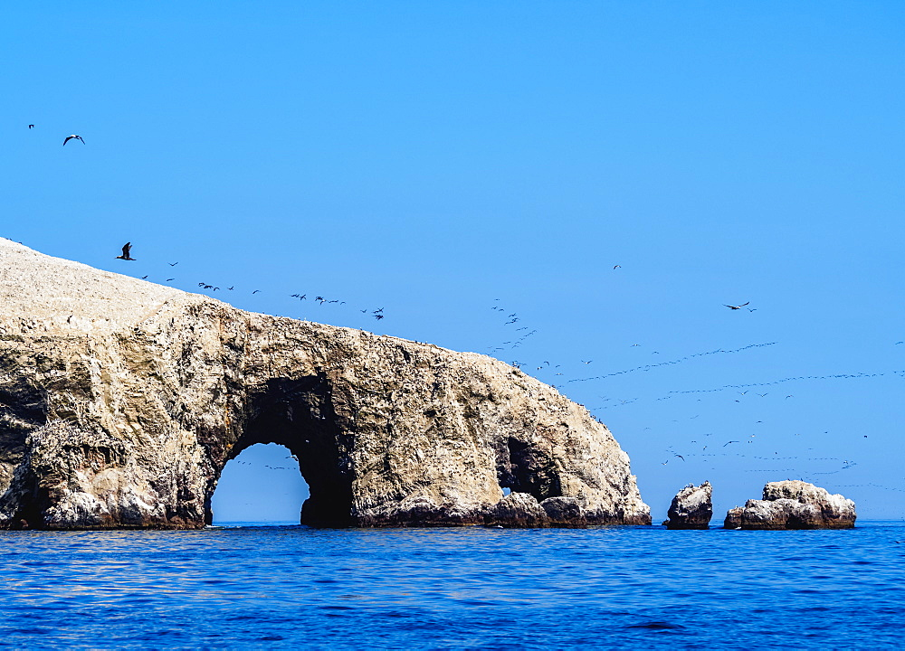 Ballestas Islands near Paracas, Ica Region, Peru, South America