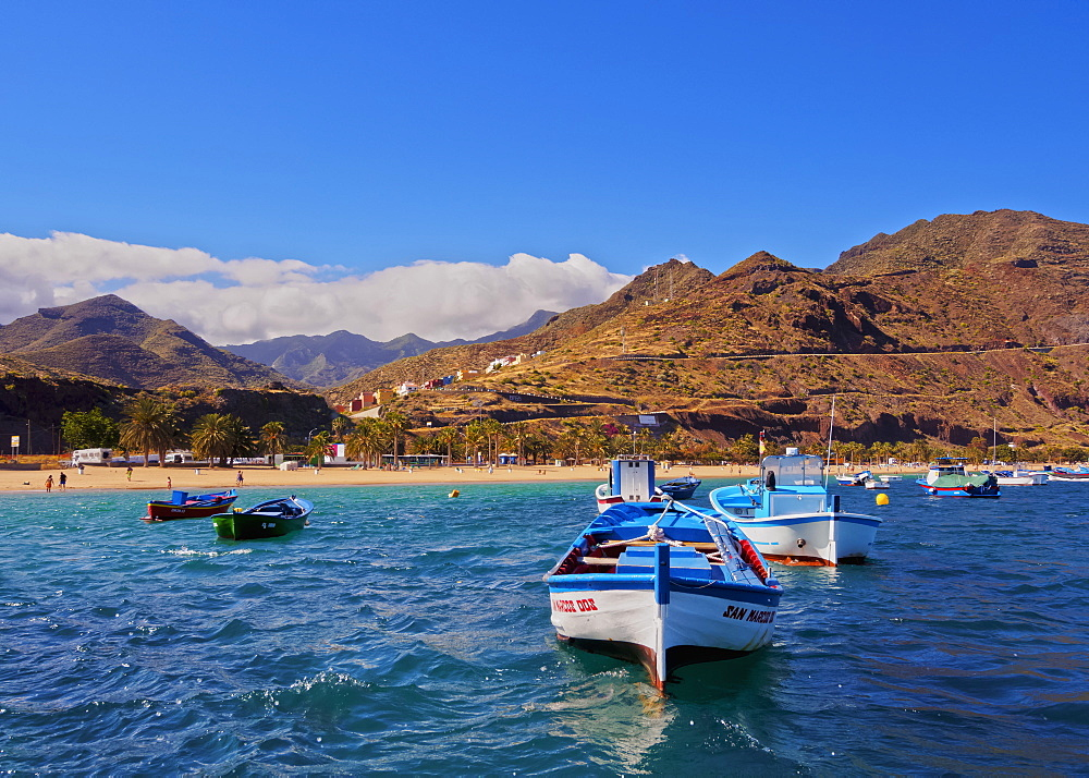 Colourful fishing boats by the Las Teresitas Beach, San Andres, Tenerife Island, Canary Islands, Spain, Atlantic, Europe