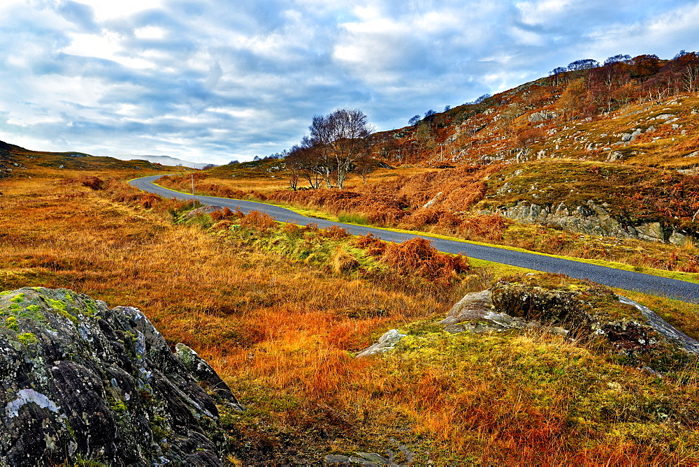 A winter view of a remote winding road through the colorful moors and hills of Ardnamurchan peninsula in the Scottish Highlands - 1246-20