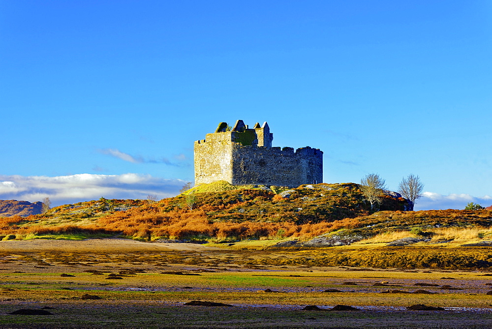 Castle Tioram on the coastal island Eilean Tioram where River Shiel and Loch Moidart meet, at low tide on a sunny winter morning - 1246-8