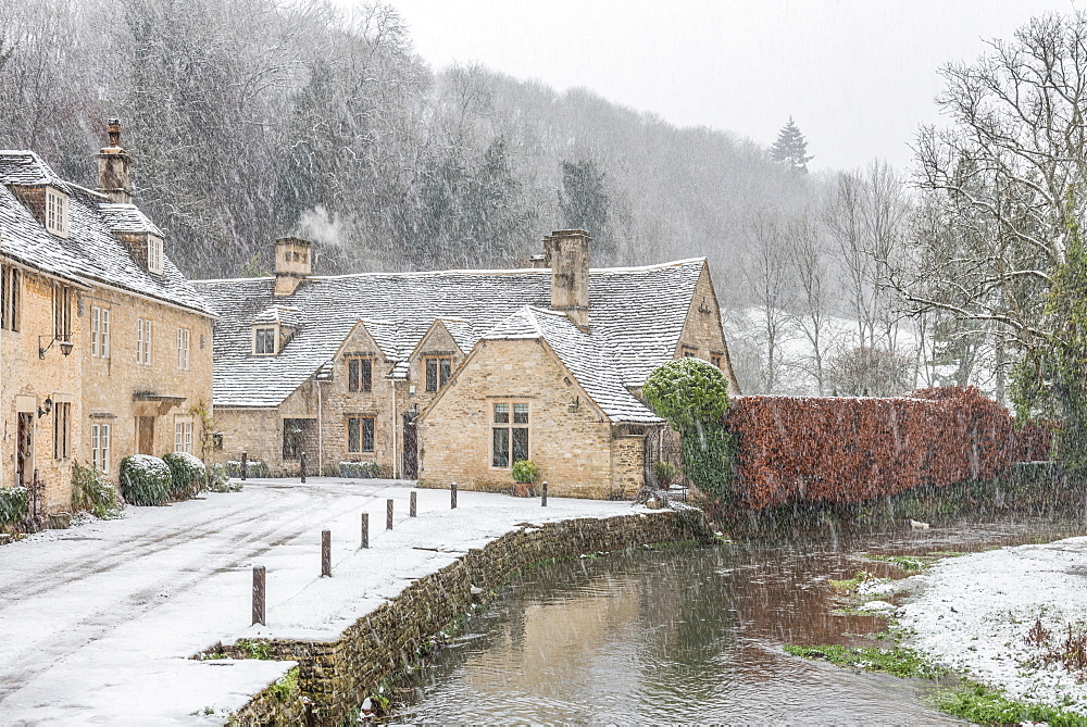 Snow covered houses by By Brook in Castle Combe with a dog enjoying a paddle, Wiltshire, England, United Kingdom, Europe - 1247-52