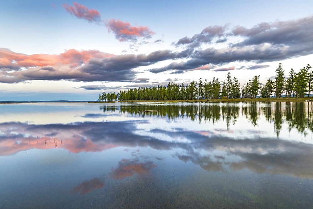 Fir trees and clouds reflecting on the suface of Hovsgol Lake at sunset. Hovsgol province, Mongolia.