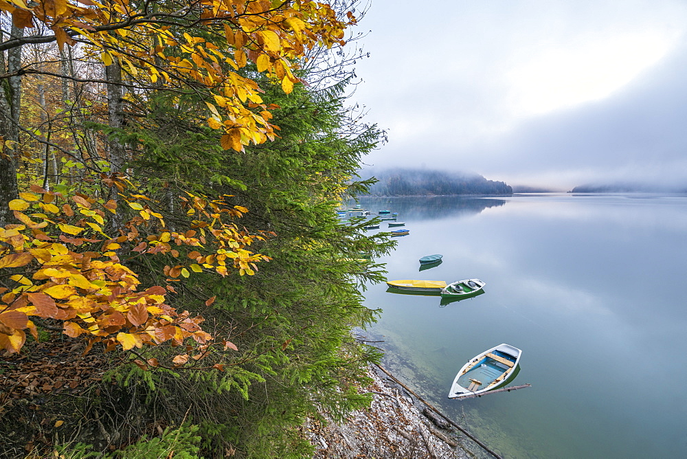 Boats on Sylvenstein Lake in autumn, Bad Tolz-Wolfratshausen district, Bavaria, Germany, Europe - 1251-393