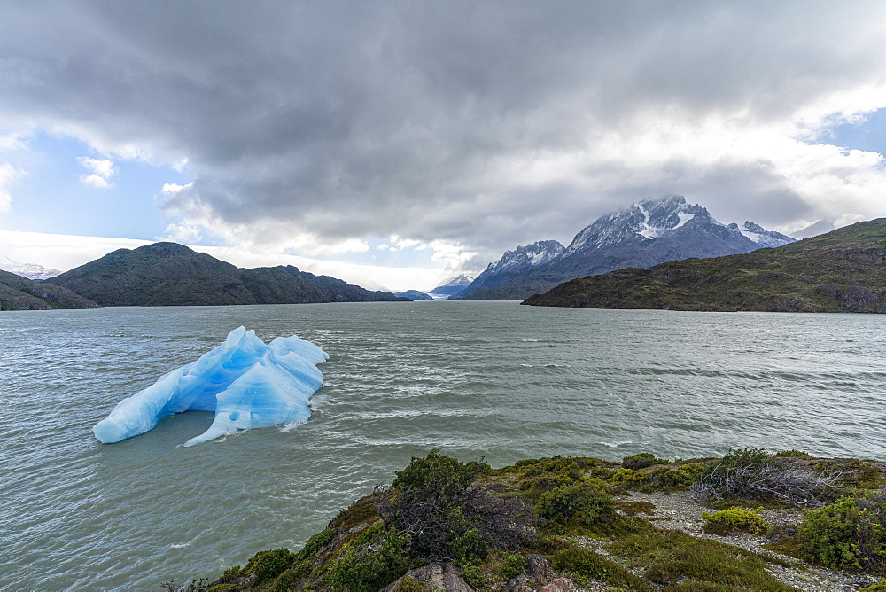 Icebergs on Lago Grey, with Cerro Paine Grande and Grey glacier in the background, Torres del Paine National Park, Chile, South America - 1251-524