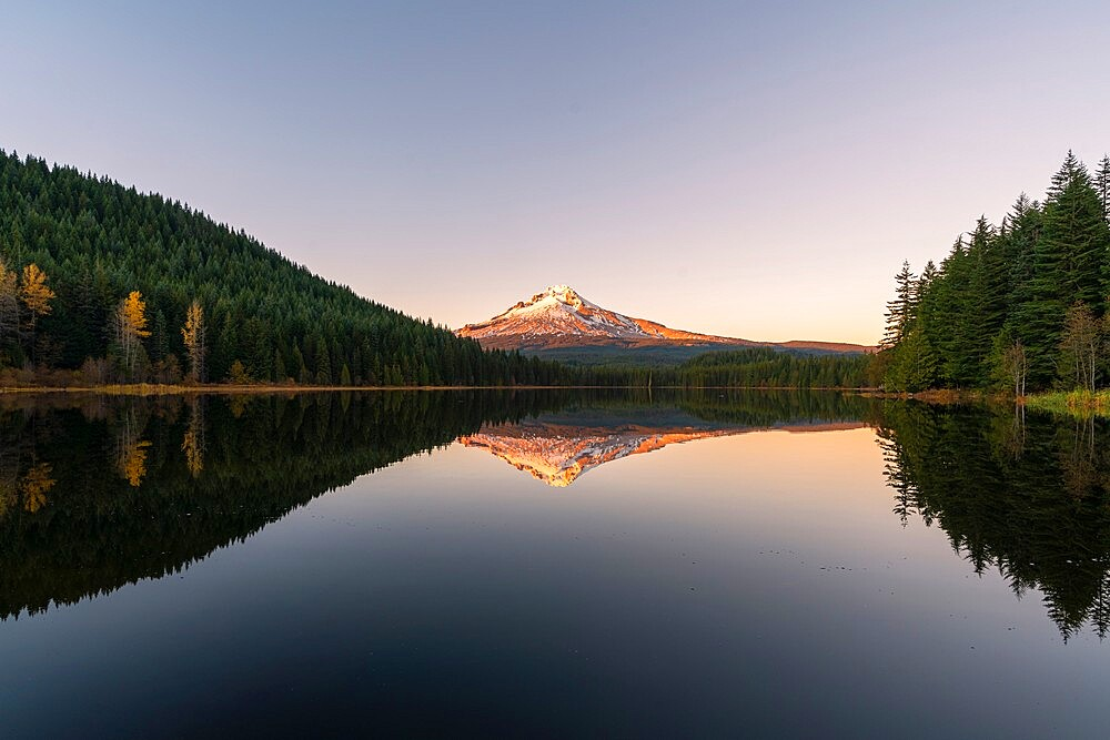 Mountt Hood reflected in Trillium Lake at sunset, Government Camp, Clackamas county, Oregon, United States of America, North America - 1251-543