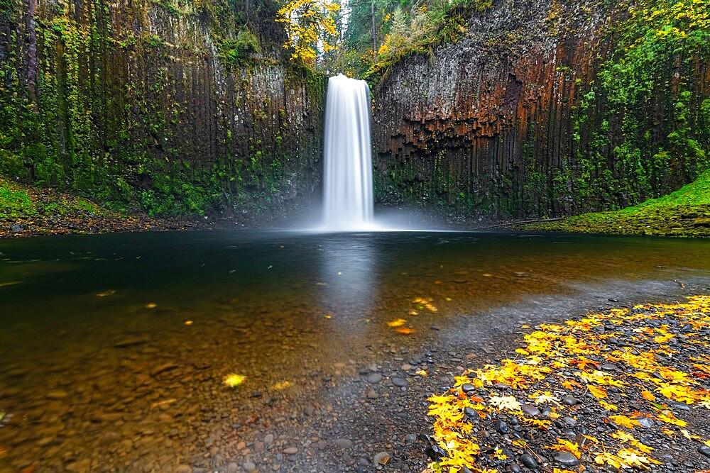 Abiqua Falls in autumn, Scotts Mills, Marion county, Oregon, United States of America, North America - 1251-544