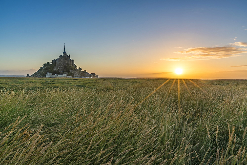 Sunrise with grass in the foreground, Normandy, France, Europe
