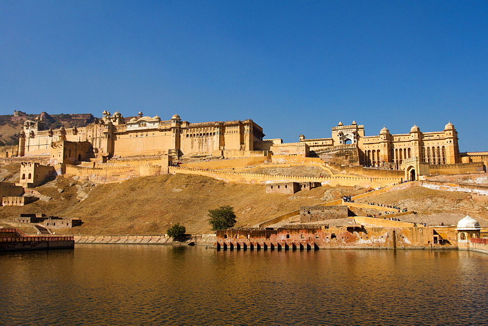 Amber Fort overlooking Maota Lake, Jaipur, Rajasthan, India, Asia - 1262-132