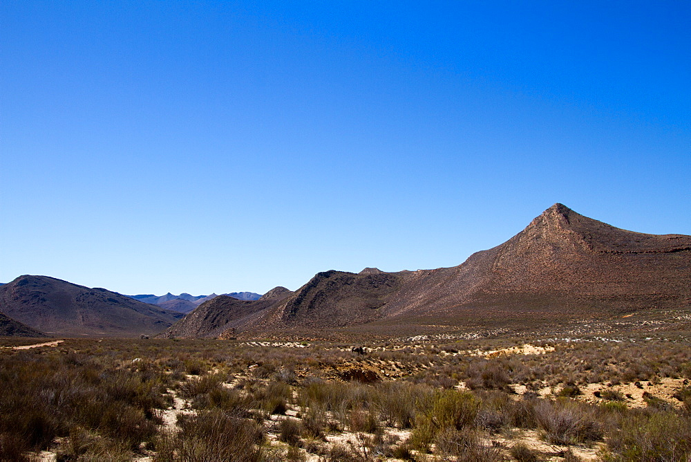 Landscape of the Aquila Safari game reserve, Cape Town, South Africa.