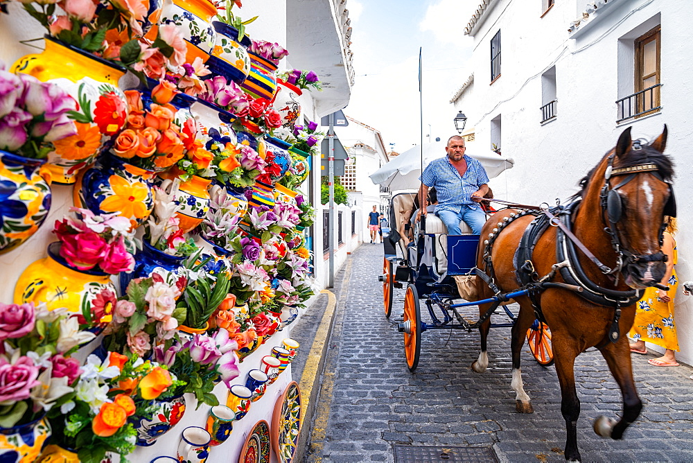 A horse and cart rides along a cobbled street, whitewashed walls and flowers in the Andalusia town of Mijas Pueblo, Costa de Sol