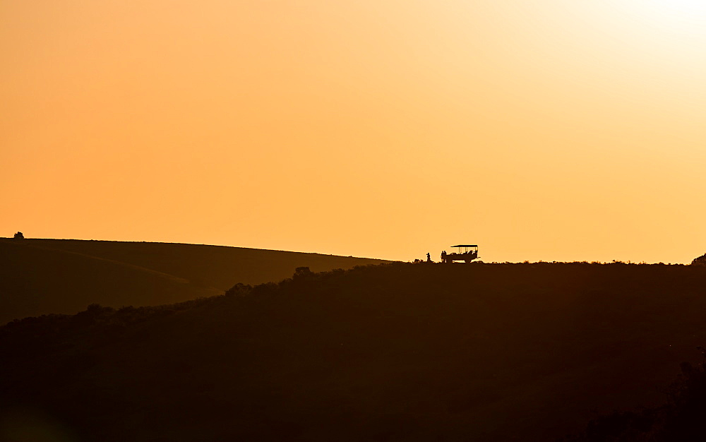 Sundowners at sunset over a South African Game Reserve, Amakhala, Eastern Cape, South Africa, Africa - 1263-70