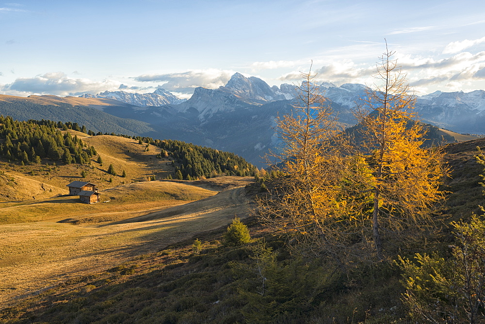 Italy, Trentino,Alpe di SIusi, , Odle mountain range at sunrise - 1264-129