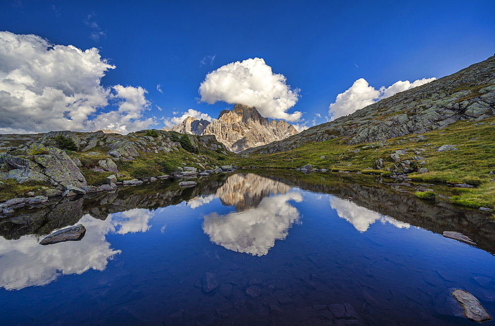 Rolle Pass, Cimon de la Pala reflected in a small lake, Dolomites, Veneto, Italy, Europe