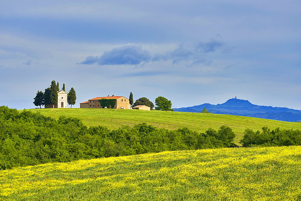 Vitaleta Chapel in spring, Val d'Orcia, UNESCO World Heritage Site, Tuscany, Italy, Europe - 1264-287