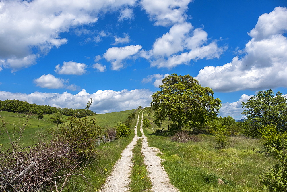 Countryside in spring, Gubbio, Umbria, Italy, Europe - 1264-32