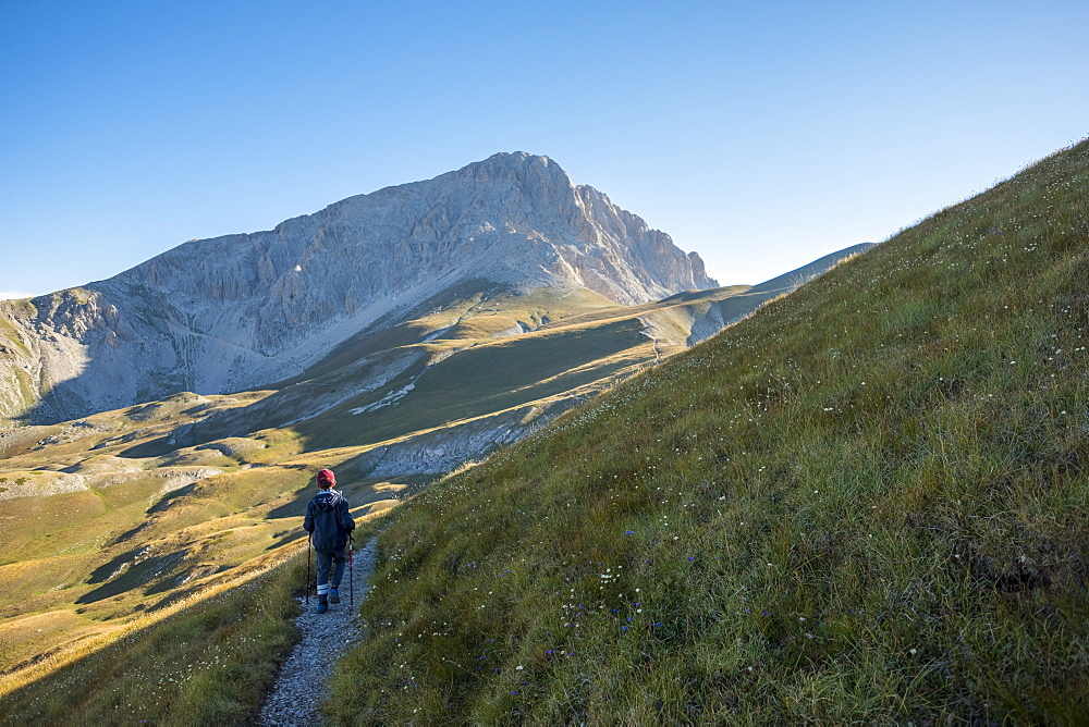 Hiker on the path to the summit of peak Corno Grande, Gran Sasso e Monti della Laga National Park, Abruzzo, Italy, Europe