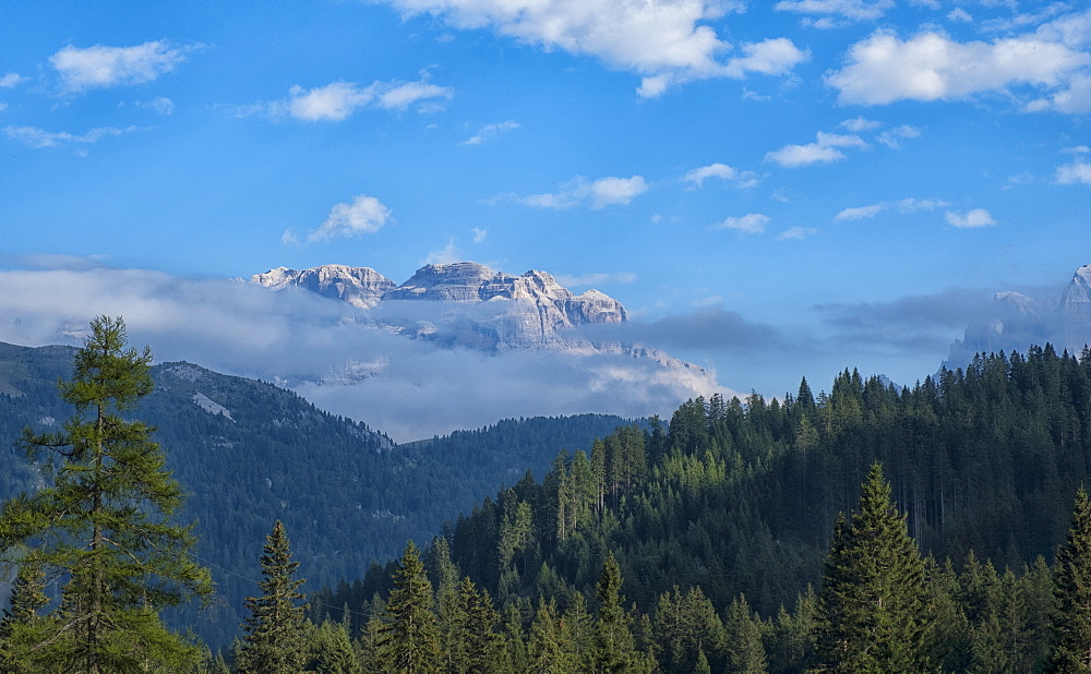 Brenta mountain range, Rendena Valley, Trentino, Italy, Europe - 1264-94