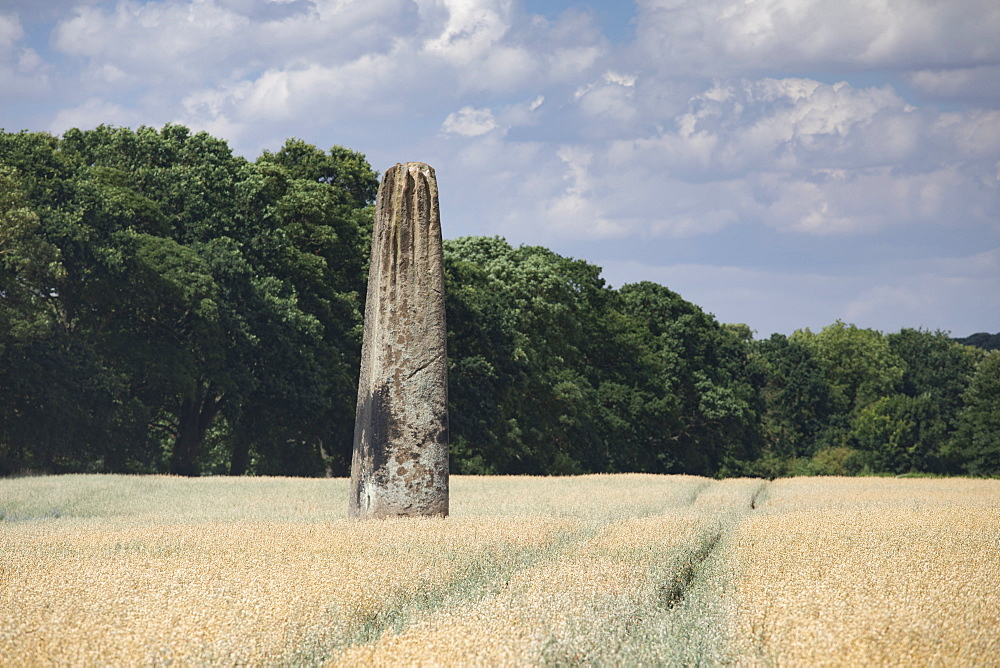 The Devils Arrows, a series of Neolithic Standing Stones near Boroughbridge, North Yorkshire, Yorkshire, England, United Kingdom, Europe - 1266-150
