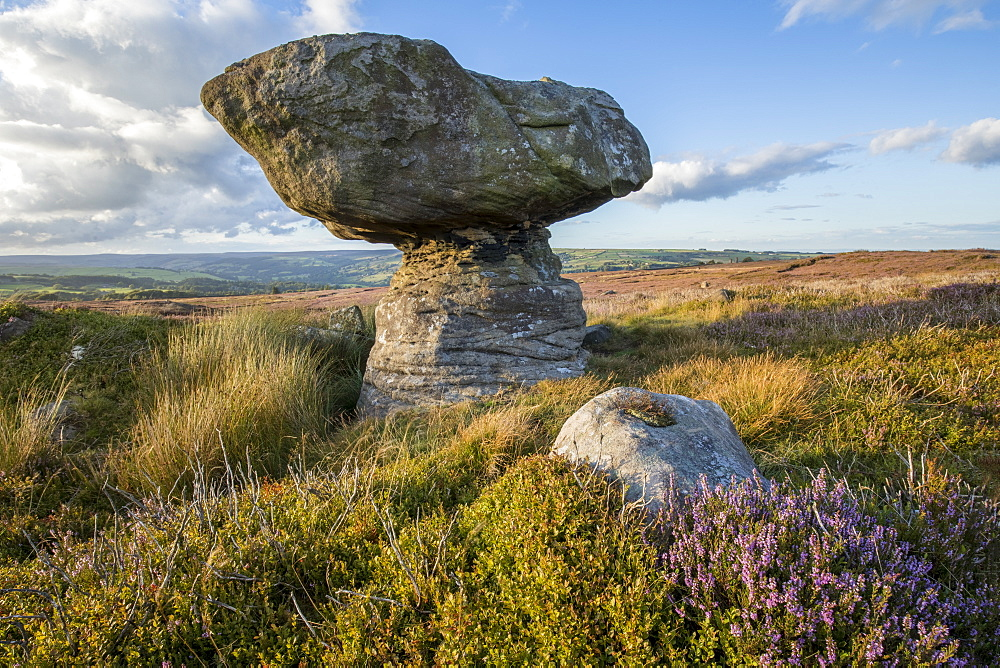 Gritstone rock formation on Nought Moor, Nidderdale, North Yorkshire, Yorkshire, England, United Kingdom, Europe - 1266-155