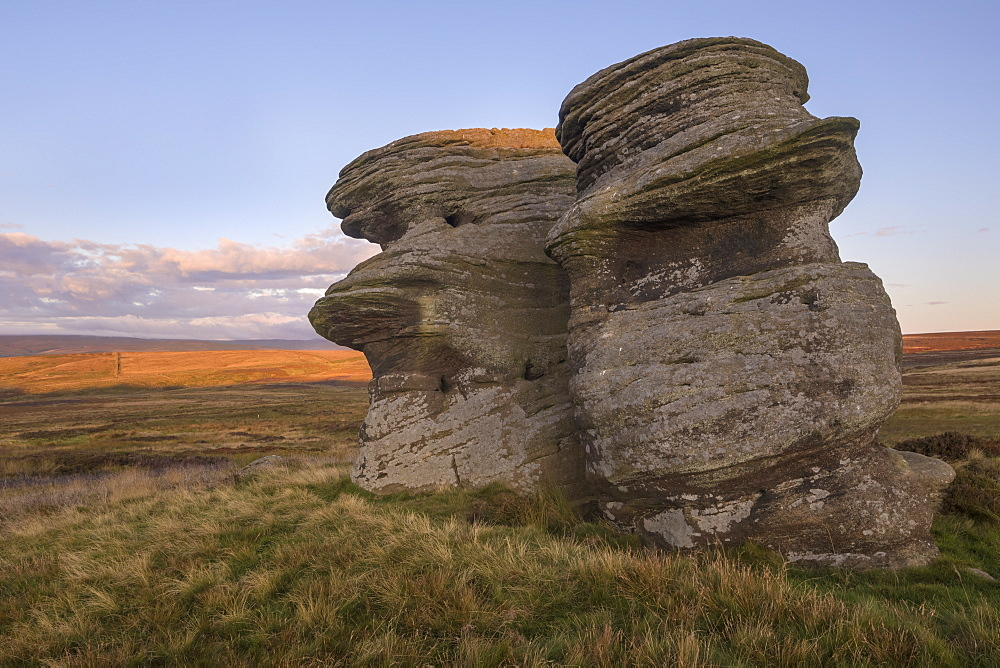 Jenny Twigg and her daughter Tibb, Gritstone rock formations on Fountains Earth Moor, Nidderdale, North Yorkshire, Yorkshire, England, United Kingdom, Europe - 1266-156