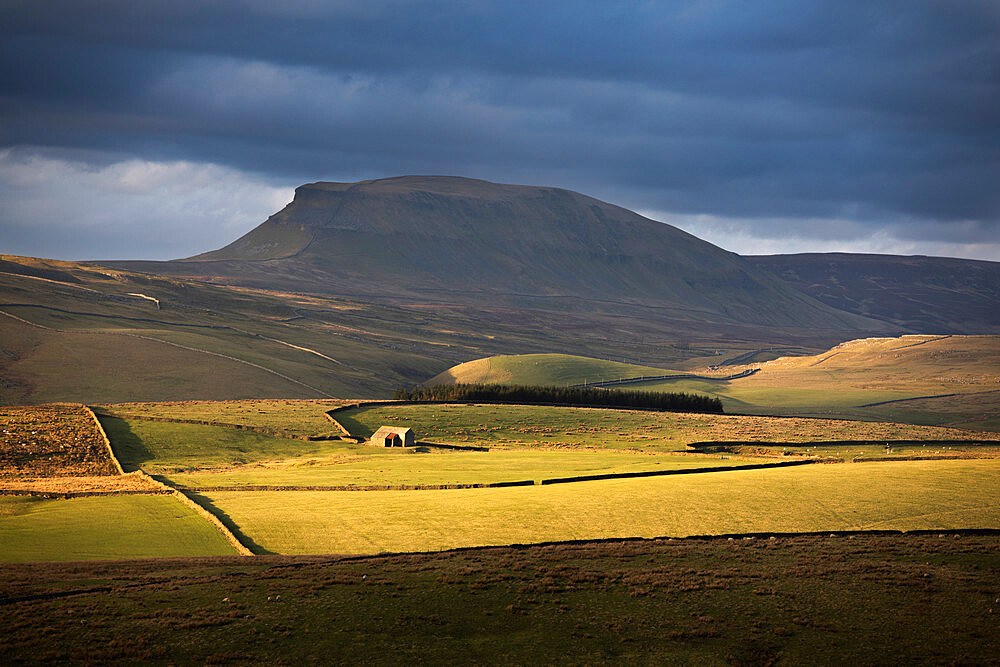 Soft light beneath the flanks of Pen-y-ghent (One of the famous Yorkshire 'Three Peaks') Yorkshire Dales, North Yorkshire - 1266-164