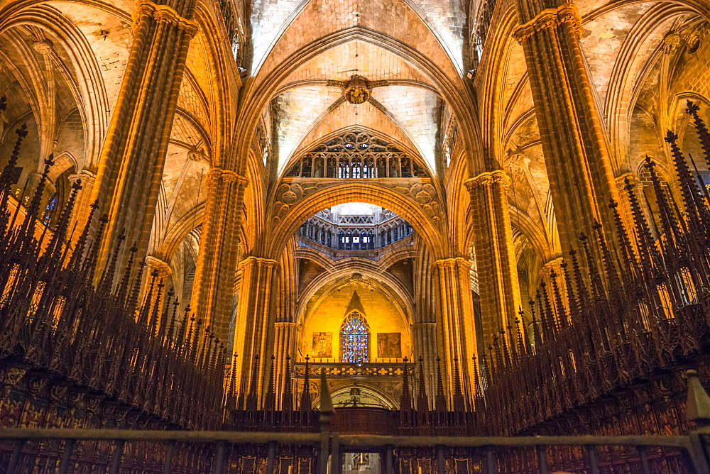 Cathedral of the Holy Cross and Saint Eulalia (Barcelona Cathedral), Barcelona, Catalonia, Spain, Europe
