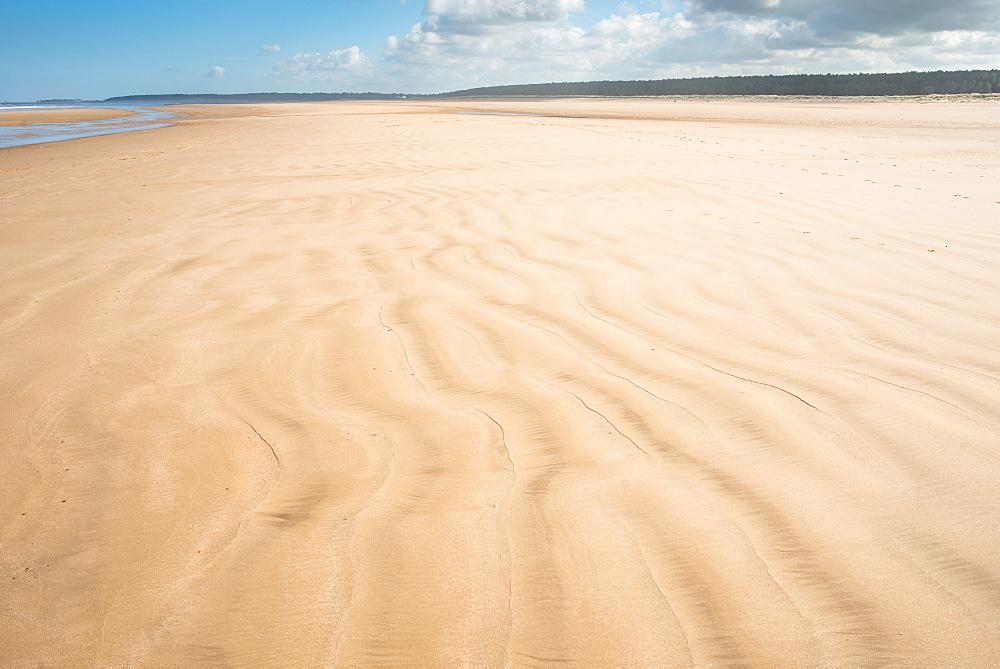 Sandy beach at Holkham Bay on the Norfolk Coast Path National Trail, Norfolk, East Anglia, England, United Kingdom, Europe