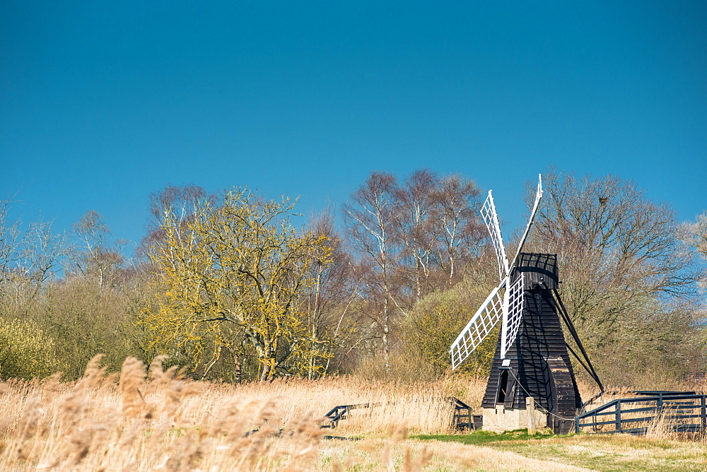The last surviving wooden wind pump in the Fens at Wicken Fen National Nature Reserve, Cambridgeshire, East Anglia, England, United Kingdom, Europe